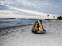 Pit Fire on a Beautiful Beach in Mexico Stock Images