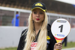 Pit Lane Girls Fotografia de Stock Royalty Free