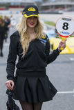 Pit Lane Girls Royalty-vrije Stock Foto's