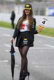 Pit Lane Girls Stock Afbeelding