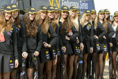 Pit Lane Girls. Stock Photography