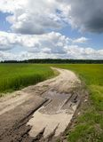 Dirt road. Pit and puddles on a small sandy road passing through an agricultural field. photo close-up after the rain in the summer Stock Image