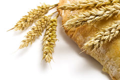 Pita bread and spikelets Royalty Free Stock Photo