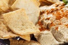 Pita Chips crocante caseiro com Hummus Imagem de Stock Royalty Free
