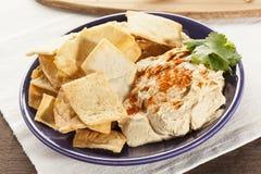 Pita Chips crocante caseiro com Hummus Imagem de Stock