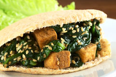 Pita encheu-se com o Tofu, o espinafre e o sésamo Imagens de Stock Royalty Free