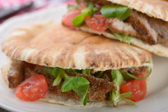 Pita with meat and vegetables Stock Photography