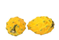 Pitahaya Royalty Free Stock Photo