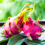 Pitahaya with leaves Royalty Free Stock Photos
