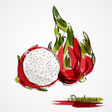 Pitahaya slice Stock Images