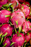 Pitaya dragon fruit Stock Photography