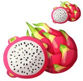 Pitaya Dragon fruit fruit. Cartoon vector icon. Isolated on white background. Series of food and drink and ingredients for cooking stock illustration