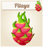 Pitaya Dragon fruit fruit. Cartoon vector icon. Series of food and drink Royalty Free Stock Images