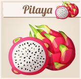 Pitaya Dragon fruit fruit. Cartoon vector icon. Series of food and drink and ingredients for cooking Royalty Free Stock Photo
