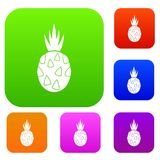 Pitaya, dragon fruit set collection. Pitaya, dragon fruit set icon in different colors isolated vector illustration. Premium collection Royalty Free Stock Photo