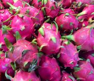 Pitaya Royalty Free Stock Images