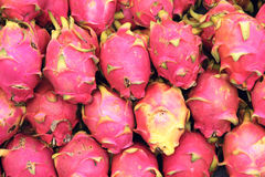 Pitaya fruits Stock Images
