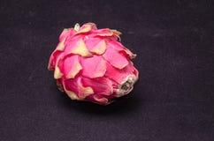 Pitaya ou fruto do dragão Imagens de Stock