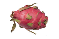 The pitaya is a type of delicious fruit. Royalty Free Stock Images