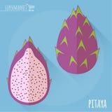 Pitaya vector icon. Stock Photos