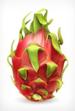 Pitaya, vector icon Stock Images