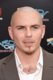 Pitbull. & date at the 2006 BET Awards in Los Angeles.. June 27, 2006  Los Angeles, CA  2006 Paul Smith / Featureflash Royalty Free Stock Images