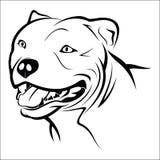 Pitbull illustration de vecteur
