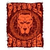 Pitbull royalty-vrije illustratie