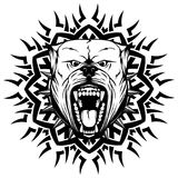 Pitbull. Abstract vector black and white illustration portrait of aggressive dogs on round pattern. Head of dog breed pit bull with open mouth and collar with Stock Photography