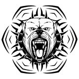 Pitbull. Abstract vector black and white illustration portrait of aggressive dogs on round pattern. Head of dog breed pit bull with open mouth and collar with Royalty Free Stock Image