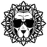 Pitbull. Abstract vector black and white illustration portrait of fighting dogs on round pattrn. Head of dog breed pit bull in sunglasses Stock Photos