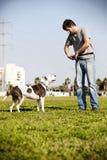 Pitbull e proprietário do cão Fotos de Stock Royalty Free