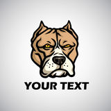 Angry bulldog boxer. Brown bulldog boxer cartoon character.  |Angry Pitbull Drawings Straight Jacket