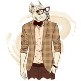 Pitbull hipster in a jacket and sunglasses . Vector illustration. The print on the cover , clothing or card . Royalty Free Stock Photo