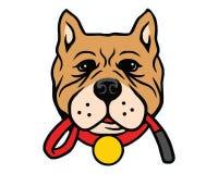 Pitbull hundvektor Arkivfoton