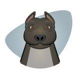 Pitbull illustration. Funny illustration of a pitbull Royalty Free Stock Photo