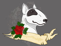 Pitbull with tattoo styled ribbon and rose Royalty Free Stock Images