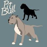 Pitbull terrier vector illustration style flat silhouette Stock Photos