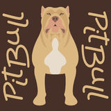 Pitbull terrier vector illustration style flat silhouette Stock Photo