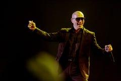Pitbull utför i Jakarta Arkivbilder