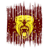 Pitbull. Vector illustration of aggressive snarling dog breed pit bull with an open mouth. Head pitbull with collar with spikes Royalty Free Stock Image