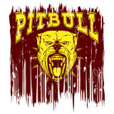 Pitbull. Vector illustration of aggressive snarling dog breed pit bull with an open mouth. Head dog with collar with spikes. Inscription pitbull Royalty Free Stock Photography