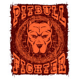 Pitbull. Vector illustration orange portrait of fighting dogs breed pit bull on grunge background. Head of dog with collar with spikes in frame of barbed wireand Royalty Free Stock Image
