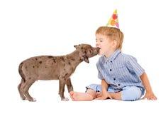 Pitbullwelpe küsst den Jungen Lizenzfreie Stockfotos