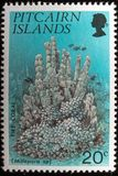 Pitcairn Islands Commemorative Postage Stamp. A macro image of a commemorative Pitcairn Islands 20c 1994 Corals Stamp stock photos