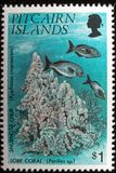 Pitcairn Islands Commemorative Postage Stamp. A macro image of a commemorative Pitcairn Islands $1 1994 Corals Stamp royalty free stock photo