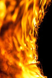 Pitch, Flames and Charcoal. Oiling log burning hot from macro distance Royalty Free Stock Photo