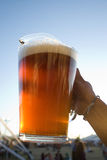 Pitcher of beer Stock Photography