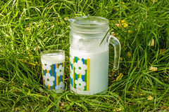 Pitcher and glass of milk on the green grass Stock Image
