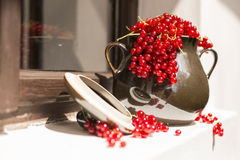 Pitcher/jug of redcurrant on a direct sunlight on a window stock photos